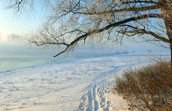 Sporen op sneeuw Royalty-vrije Stock Afbeeldingen
