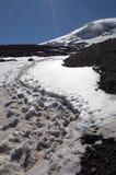 Sporen op sneeuw stock fotografie