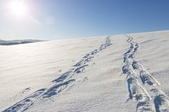 Sporen op sneeuw stock afbeelding