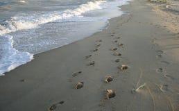 Sporen op zand Stock Foto