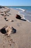 Sporen op zand Stock Afbeeldingen