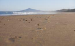 Sporen op zandig strand Stock Afbeelding