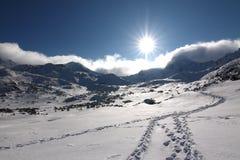 Sporen in sneeuw Royalty-vrije Stock Fotografie