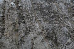 Sporen, tekens van autowiel op modder stock foto