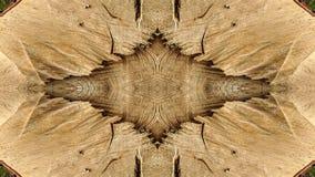 Sporen van besnoeiingen op een gestileerde boomstam voor decoratie royalty-vrije stock foto
