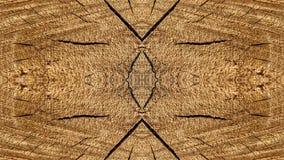 Sporen van besnoeiingen op een gestileerde boomstam voor decoratie stock afbeeldingen