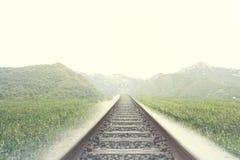 Sporen van een spoorweg in een van nature omringde plaats royalty-vrije stock foto