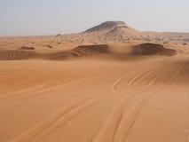 Sporen van het offroad drijven in woestijn Stock Fotografie