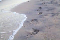 Sporen van naakte voeten op nat overzees zand Royalty-vrije Stock Foto's