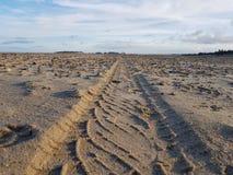 Sporen in zand stock afbeelding