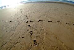 Sporen in zand stock fotografie