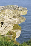 Sporgenza devoniana della roccia del calcare fotografie stock libere da diritti