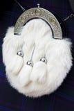 Sporran do cabelo do cavalo branco Fotos de Stock Royalty Free