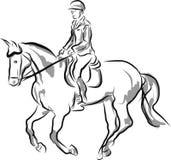 Sport équestre - cavalier sur le cheval dans l'exposition sautante Image libre de droits