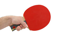Sport. Paddle Stock Photography