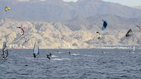 Sport activity at the Red sea, Eilat Stock Photography