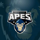 Sport Apes Abstract Vector Sign, Emblem or Logo Template. Sport Team Mascot Label. Angry Gorilla Face with Typography. Sport Apes Abstract Vector Sign, Emblem or Stock Images