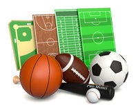 Sport ball and fields Royalty Free Stock Image