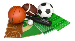 Sport ball and fields Stock Photos