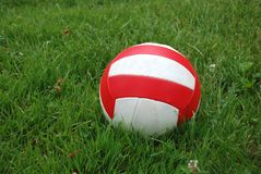 Sport ball over the grass. Sport ball over the green grass Stock Photos