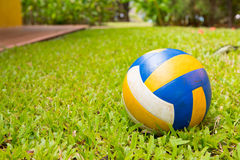 Sport ball over the grass Stock Photo