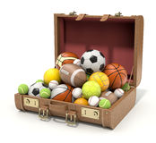 Sport balls in the case Royalty Free Stock Photo