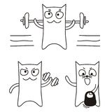 Sport cat Royalty Free Stock Photography