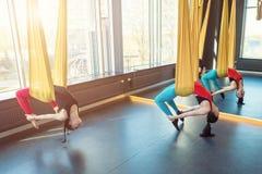Sport che allunga i excercises di yoga dell'aria della mosca Immagine Stock