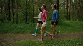 Sport che cammina nella foresta stock footage