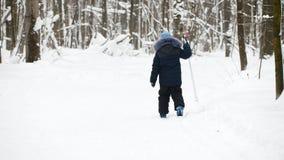 Sport childhood - boy skier slides in winter snow forest stock video