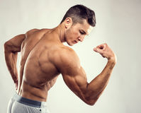 Sport concept. Close up image of muscular caucasian male in sports clothing over grey background Stock Image