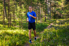 Sport concept - man jogging in forest Royalty Free Stock Images