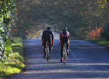 Sport Cycle Training Ride. Cyclists on a leafy glade lit by the evening sun stock images
