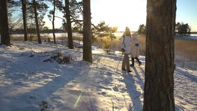 Sport d'hiver pour tous les âges - personnes actives de marche de nordic trimardant dans la forêt neigeuse banque de vidéos