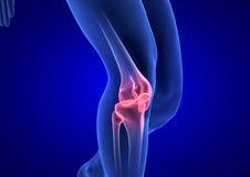 Sport, der Knieverletzung im männlichen Seitentrieb laufen lässt Blauer menschlicher Anatomie-Körper 3D übertragen auf blauem Hin lizenzfreies stockfoto