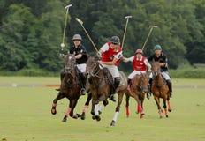 Sport di polo Fotografia Stock Libera da Diritti
