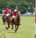 Sport di polo Fotografia Stock