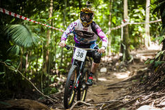 Sport in discesa della bici Fotografia Stock Libera da Diritti