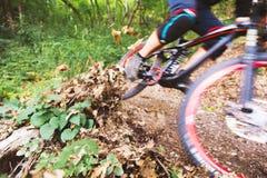 Sport Een fietser op een fiets met een bergfiets in het bos royalty-vrije stock afbeeldingen