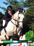 Sport equestre Fotografia Stock