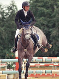 Sport equestre Fotografie Stock Libere da Diritti