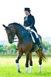 Sport equestre. Cavaliere femminile di dressage Immagine Stock Libera da Diritti