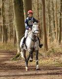 Sport equestre, cavallo galoppante fotografia stock