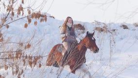 Sport equestre - donna del cavaliere sul cavallo che galoppa nel campo nevoso video d archivio