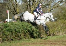 Sport equestre: il salto del cavallo Immagini Stock Libere da Diritti
