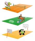 Sport et animal Photos libres de droits