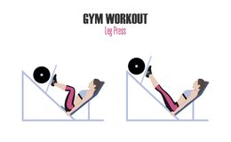 Sport exercises. Exercises in a gym. Leg press. Woman doing exercise on leg press machine in gym Illustration of an active lifesty. Sport exercises. Exercises in Stock Photo