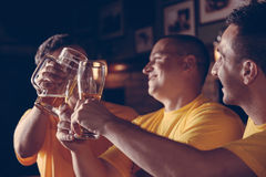 Sport fans In Pub Royalty Free Stock Photography