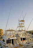 Sport fishing boats in a marina. Sport fishing pleasure boats moored up in a private marina Stock Photography