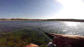 Sport fishing for trout in the Baltic sea. Sport fishing for trout in sweden stock video footage